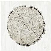Cuadro canvas woodland years II