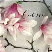 Cuadro canvas poem crop calm