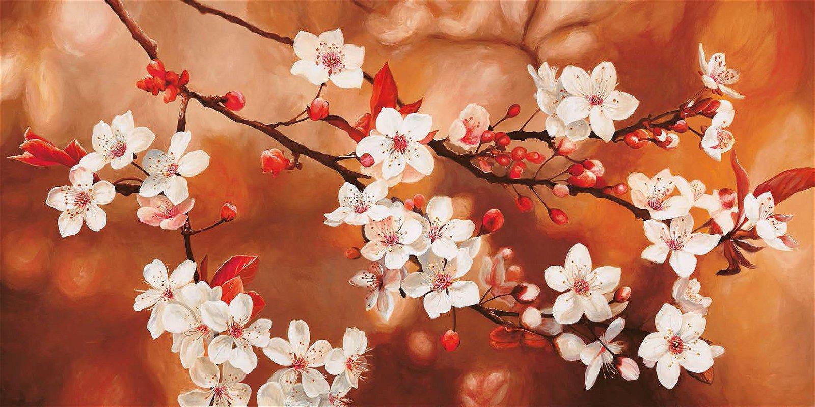 Cuadro canvas sakura