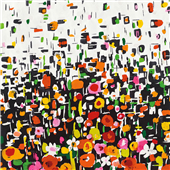Cuadro canvas flower shower crop
