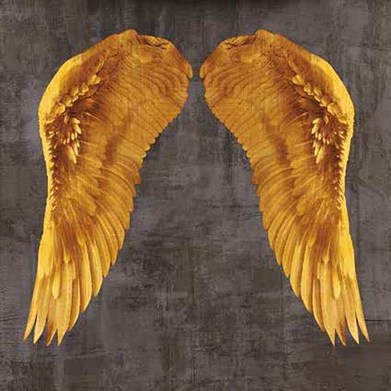 Cuadro canvas angel wings I