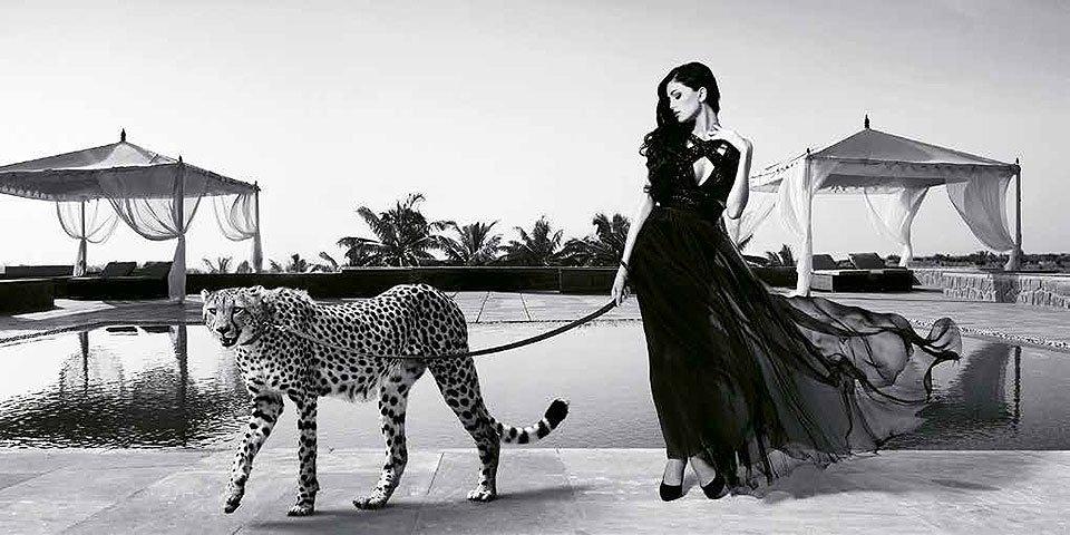 Cuadro canvas woman with cheetah