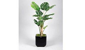 Planta Montsera Deliciosa artificial