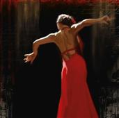 Cuadro canvas flamenco II