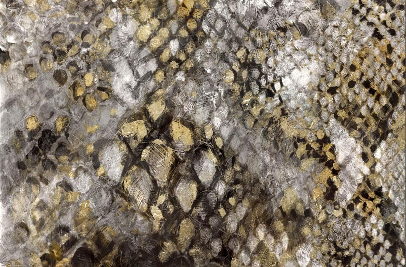 Cuadro canvas snake skin