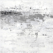 Cuadro canvas blizzard I