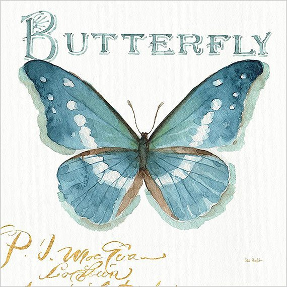 Canvas blue butterfly