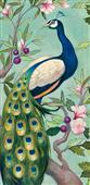 Cuadro canvas pretty peacock II