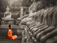 Cuadro canvas young buddhist monk praying