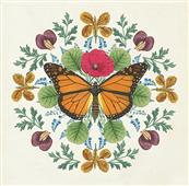 Cuadro canvas butterfly mandala I