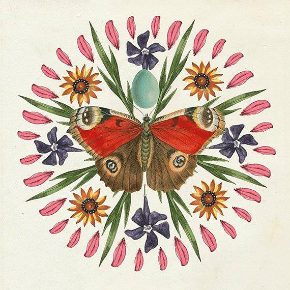 Cuadro canvas butterfly mandala II