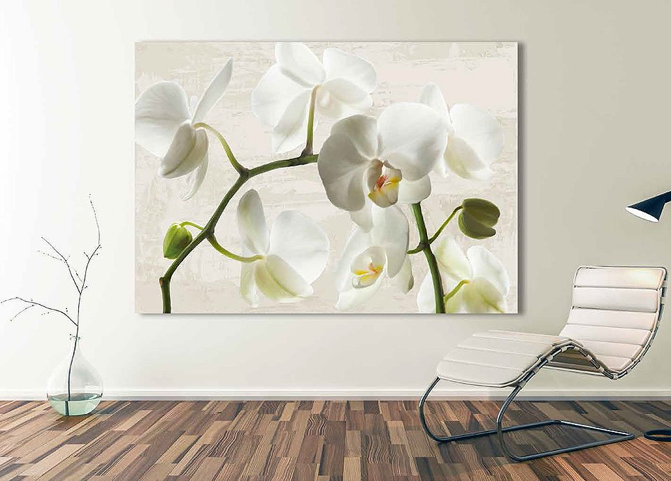 Cuadro canvas ivory orchids