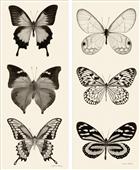 Pareja de cuadros butterfly panel
