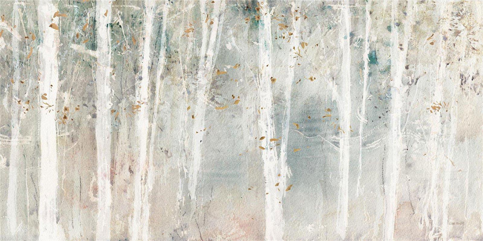 Cuadro canvas a woodland walk
