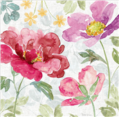 Cuadro canvas springtime bloom II