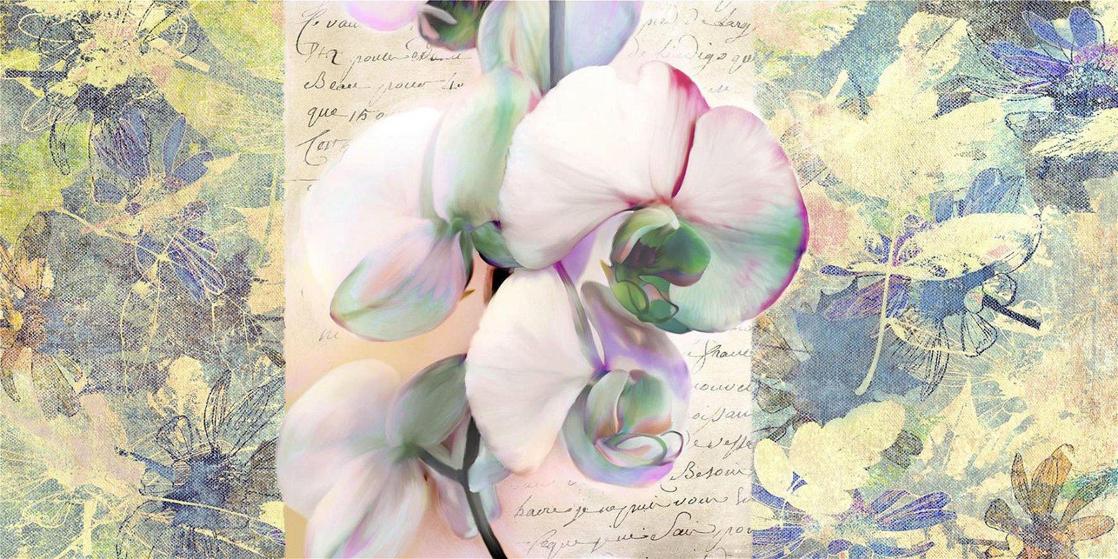 Cuadro canvas kaelidoscope orchid
