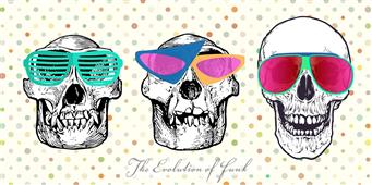 Cuadro canvas the evolution of funk