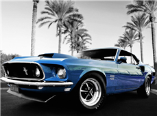 Cuadro canvas ford mustang boss 429
