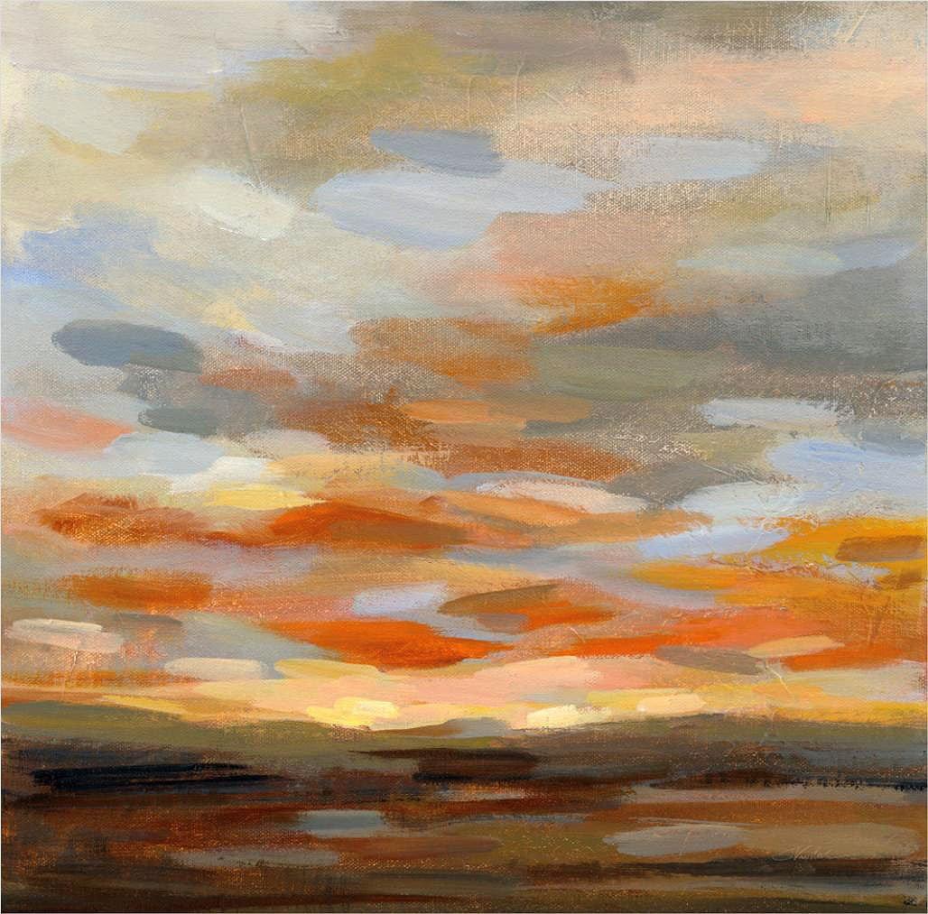Cuadro canvas high desert sky II