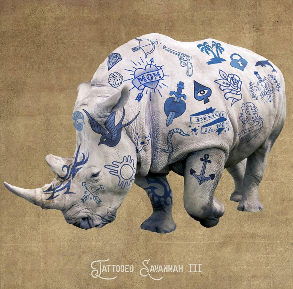 Cuadro canvas figurativo rinoceronte tatuado