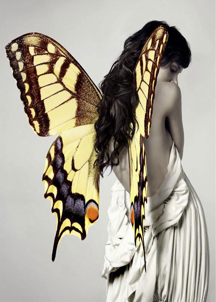 Cuadro canvas fotografia belleza alada II