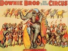 Cuadro canvas downie bros big 3 ring circus