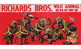 Cuadro canvas richards bros wild animal shows