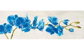 Cuadro canvas blue orchid