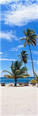 Cuadro Canvas Palmiers sur Playa Saona