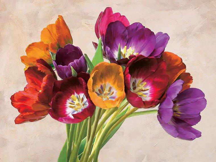 Cuadro canvas tulipani danzanti