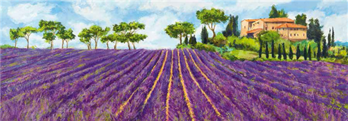 Cuadro canvas campagna provenzale