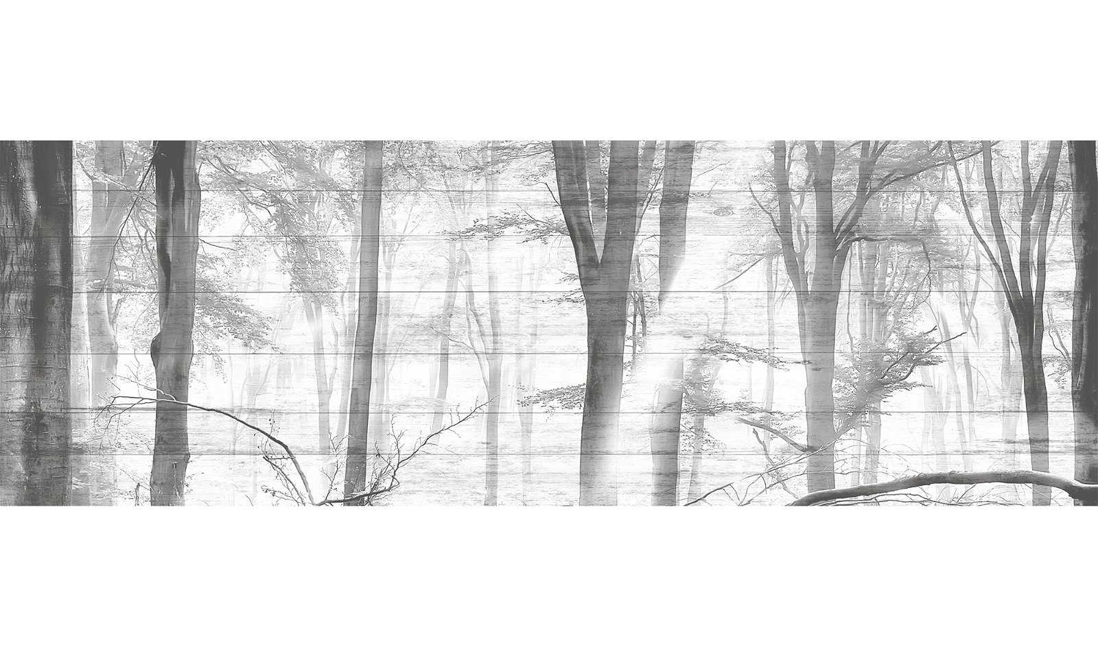 Cuadro bosque en blanco y negro